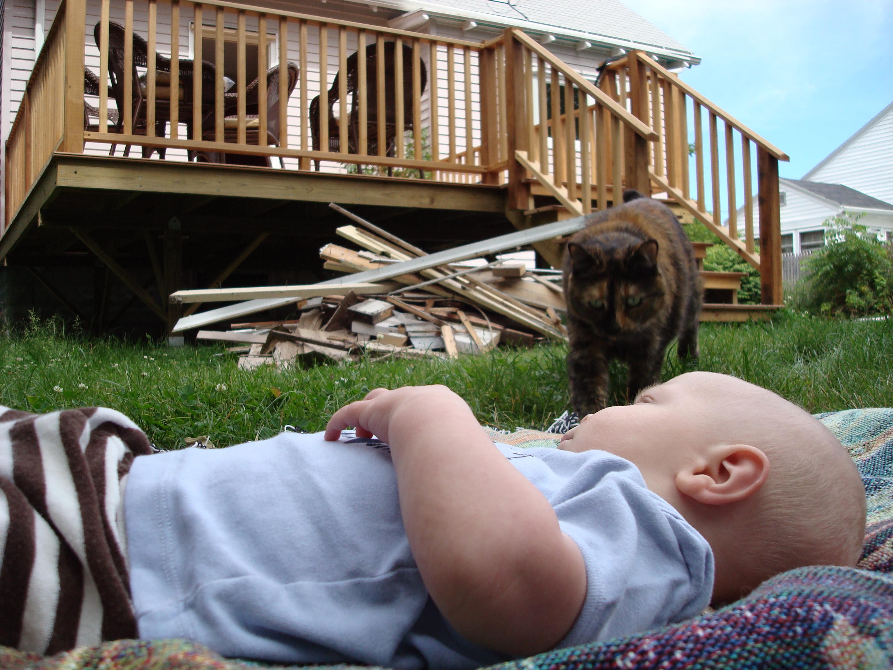 Baby in peril?
