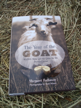Year of the Goat with bale of hay